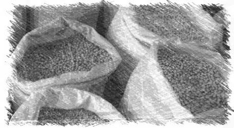Misanplas c mo cocinar legumbres secas for Como cocinar habas secas